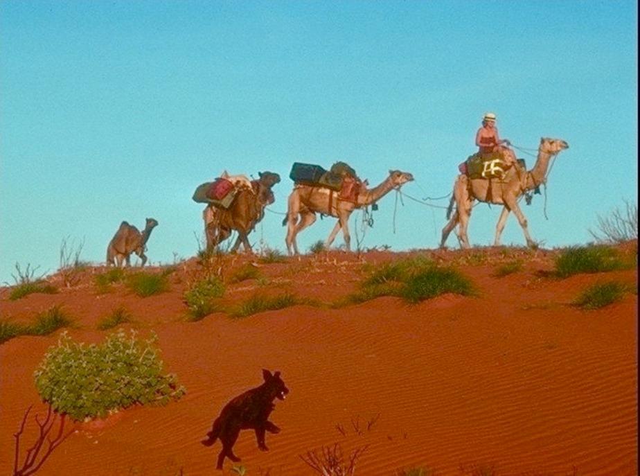 Robyn Davidson writer explorer Tracks camels Camel Lady